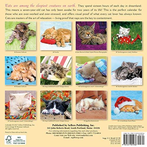 cat naps 2018 engagement calendar cw0220 sellers publishing inc