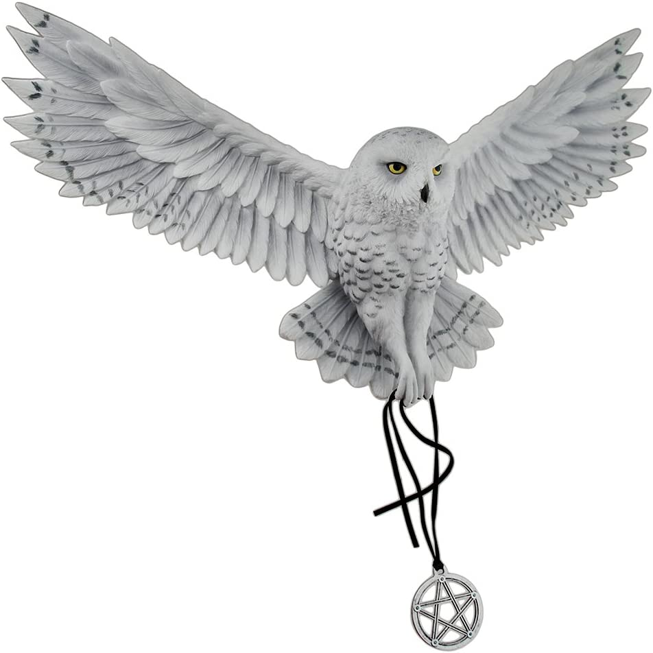 Veronese Resin Wall Sculptures Anne Stokes Awaken Your Magic Snowy Owl With Pentagram Pendant Wall Sculpture 17.5 X 11.5 X 4 Inches Light Blue