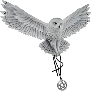 Veronese Design Anne Stokes Awaken Your Magic Snowy Owl with Pentagram Pendant Wall Sculpture