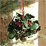 Mistletoe And Holly Kissing Ball