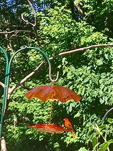 Birds Choice Oriole Nectar Feeder with Weather Guard Kit, - Nectar Green Ohio