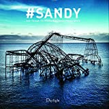 img - for #Sandy: Seen Through the iPhones of Acclaimed Photographers book / textbook / text book