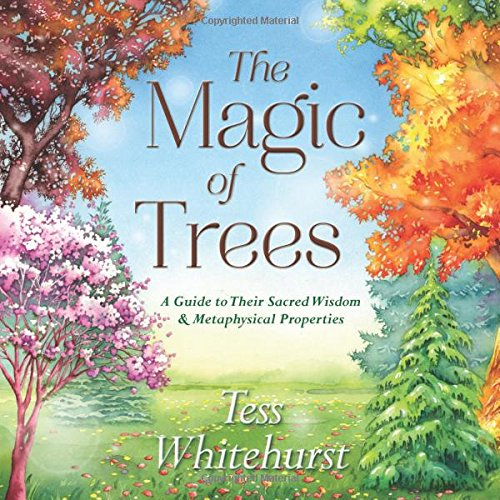 Sacred Tree (The Magic of Trees: A Guide to Their Sacred Wisdom & Metaphysical)