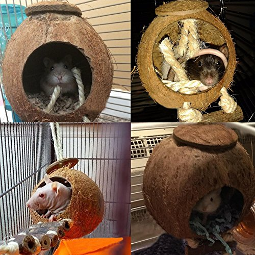 OMEM Coconut Shell Bird House,Hamster Cage and Hideouts with Ladder,Bird Cage Toy by OMEM (Image #4)