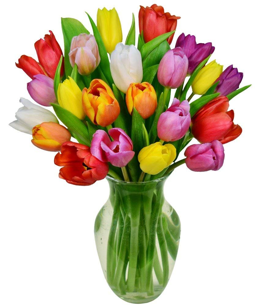 Flowers - Rainbow Tulip Bouquet - 20 Stems (Free Vase Included)