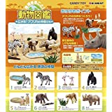 Earth whole! Spread Animal Book! African colleagues zebra separately Candy Re-Ment