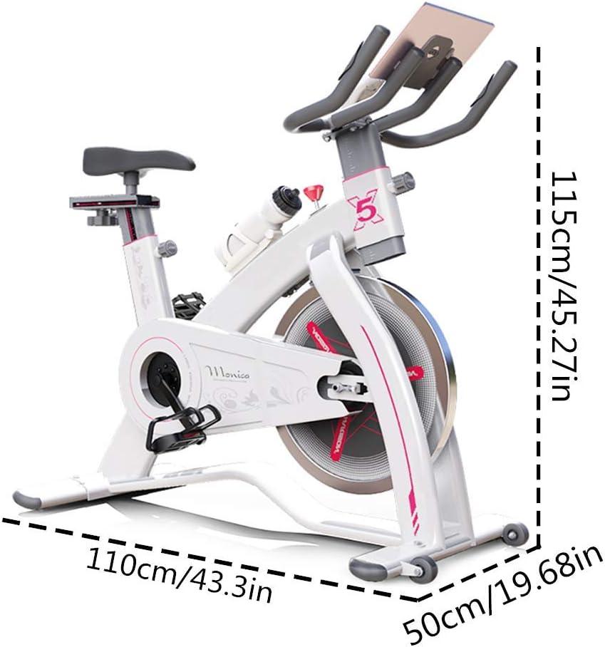 MLQ Bicicleta estática Ciclismo de Interior, Bicicleta de Spinning ...