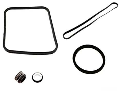 Amazon pool pump o ring seal repair kit for hayward super pool pump o ring seal repair kit for hayward super pump sp2600 1600 sciox Image collections