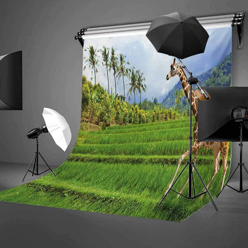 The Giraffe Goes on The Grass Against Mountain Tropical Landscape Background for Baby Shower Bridal Wedding Studio Photography Pictures Nature 6.5x10 FT Photography Backdrop