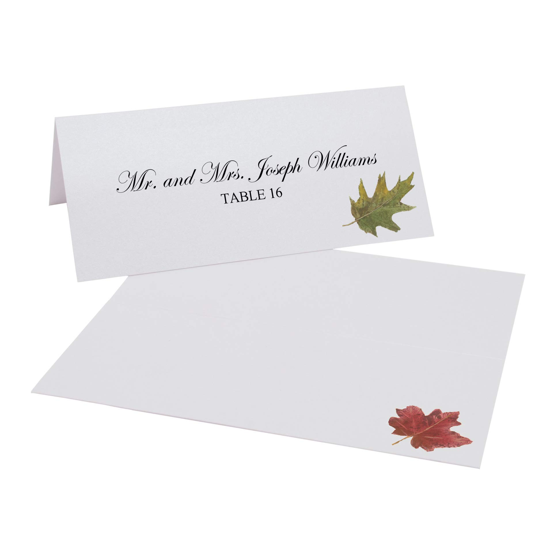Documents and Designs Assorted Autumn Leaf Place Cards, Set of 150 (25 Sheets) by Documents and Designs
