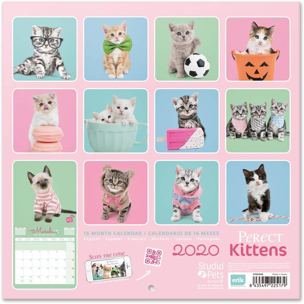 30 x 30cm Studio Pets Pugs 2020 Wall Calendar ERIK 16 Months
