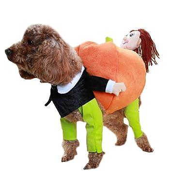 Haustier Hund Kurbis Hoodie Halloween Kostum Kleidung Katze Kostum