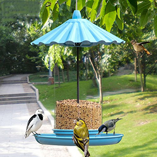 md-11-inches-high-outdoor-blue-hanging-bird-feeder-with-metal-cover-and-transparent-pvc-body-design