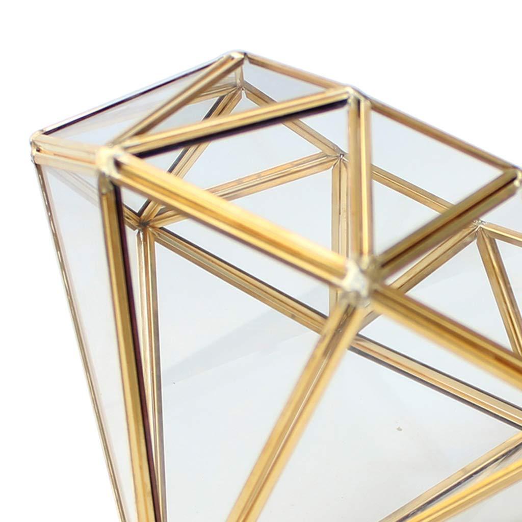 MagiDeal Geometric Glass Terrariums Succulent Plant Holder Home ...