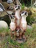 Familia de suricatos Figura Jardín Figura 20cm
