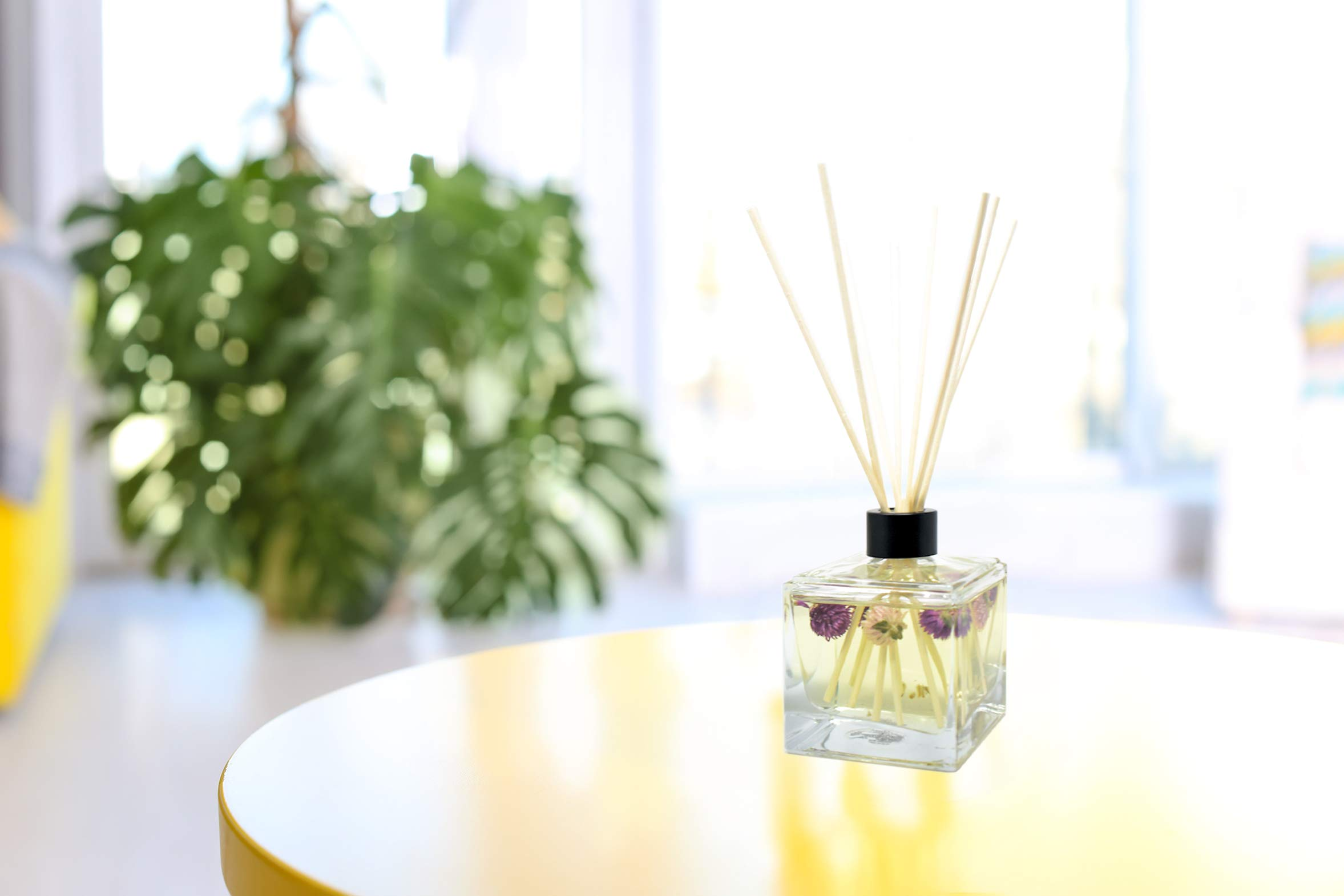 LOVSPA Fresh Cut Flowers Reed Diffuser Oil and Sticks Gift Set | Spring is in The Air! A Floral Medley of Sweet Lilac, Pink Freesia, Hyacinth, Rose & Green Ivy Leaves | Real Flowers in The Bottle! by LOVSPA (Image #5)