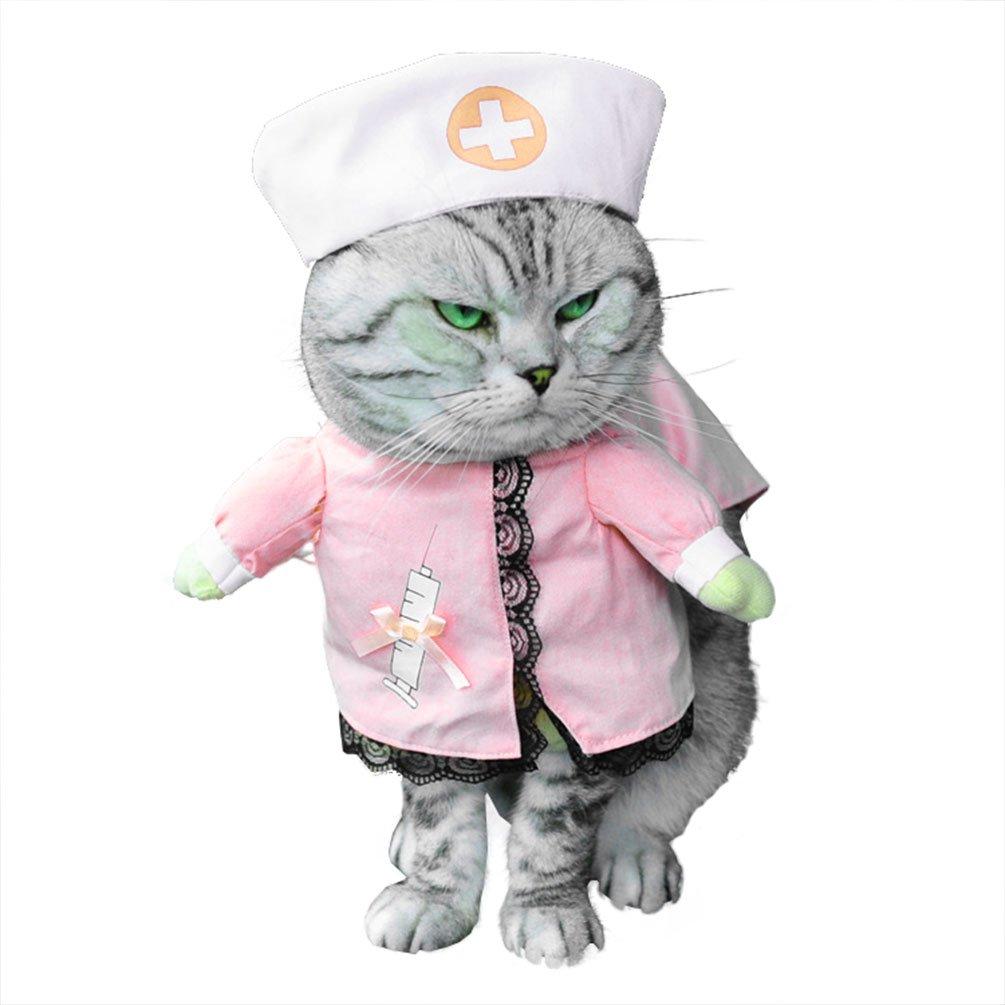 déguisement halloween chat infirmière