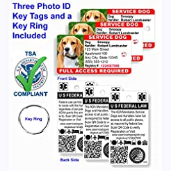 Just 4 Paws Custom Holographic QR Code S...