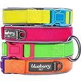 Blueberry Pet Soft & Comfortable Summer Hope 3M Reflective Fluorescent Yellow Padded Dog Collar, Neck 18