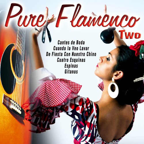 Pure Flamenco Two
