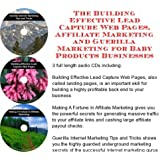 The Guerilla Marketing, Building Effective Lead Capture Web Pages, Affiliate Marketing for Baby Products Businesses