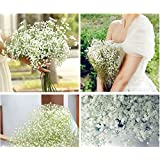 10 pcs / Lot beautiful gypsophila artificial fake silk flowers baby breath plant home wedding decorations