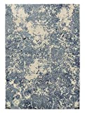 KAVKA Designs Tempe Area Rug, (Blue) - ENCOMPASS Collection, Size: 5x7x.5 - (TELAVC1465RUG57)