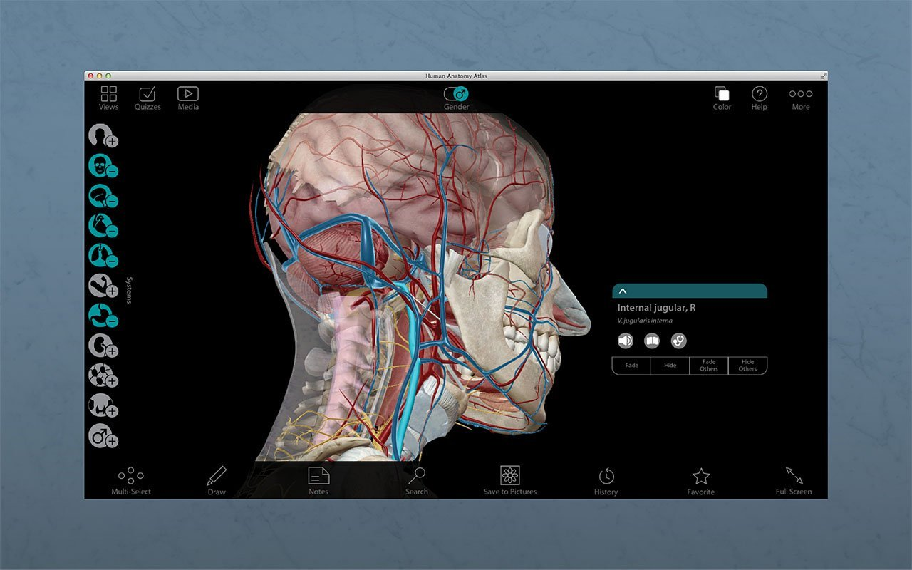 Amazon Human Anatomy Atlas Download Software