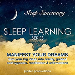 Manifest Your Dreams, Turn Your Big Ideas into Reality