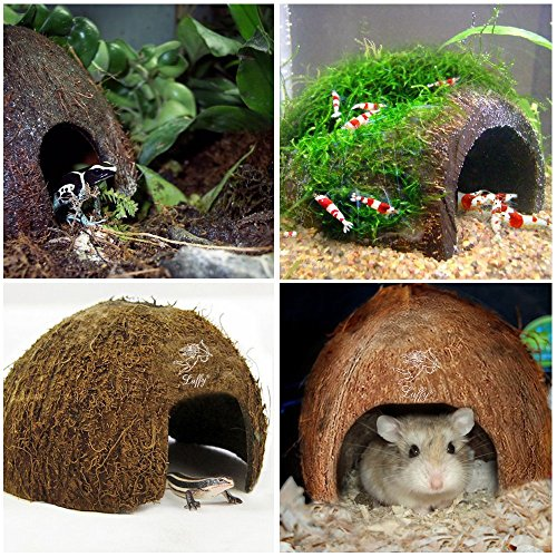 LUFFY-Natural-Coco-Hut-Eco-Friendly-Non-toxic-Made-of-Real-coconut-Smooth-Edges-Comfortable-Cute-Hideout-Snag-Free-Surface-to-Keep-Fish-Snail-and-other-pets-Safe-Perfect-for-Breeding