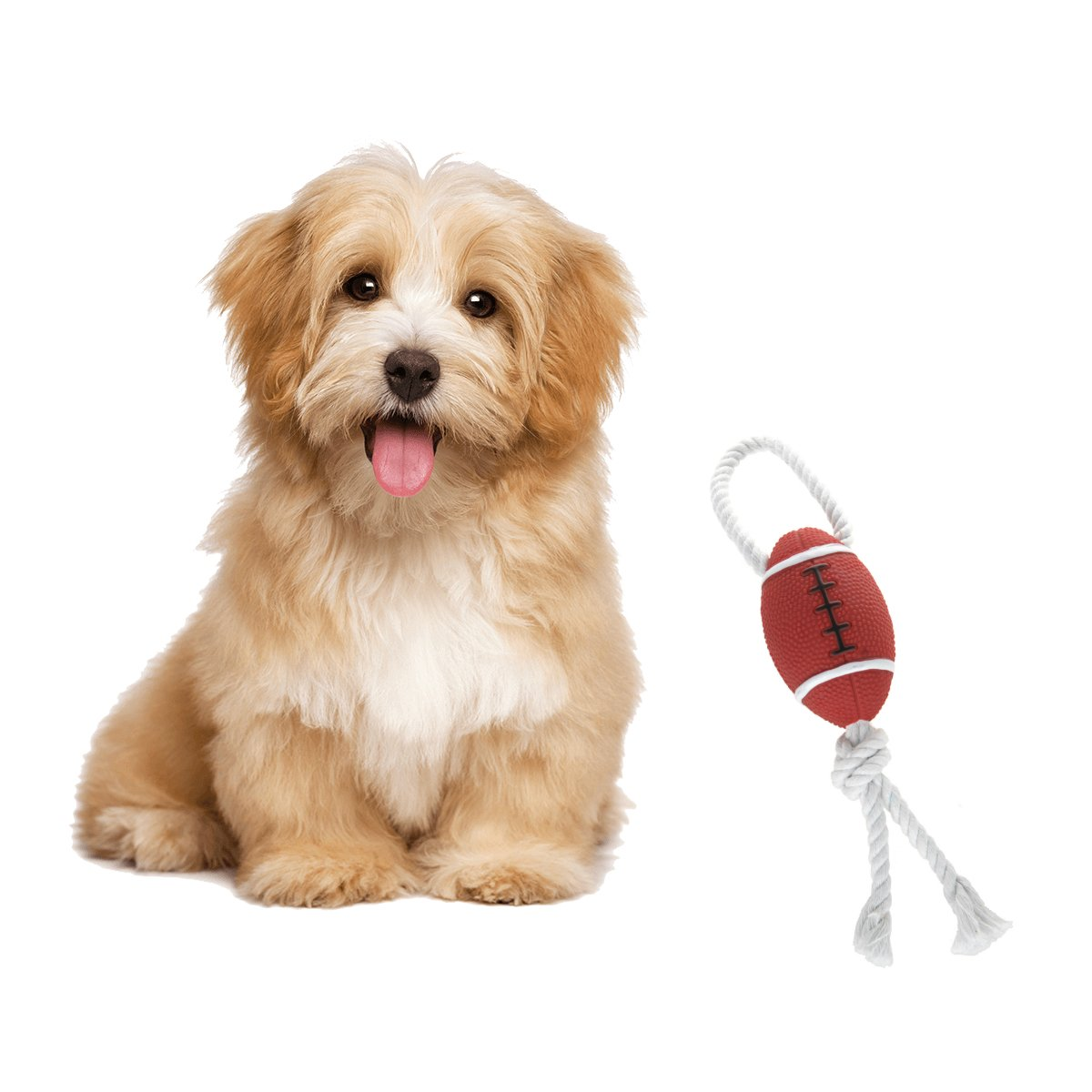 SONTORY Fun Squeaky Football with Natural Tug Rope Premium Pet Toy
