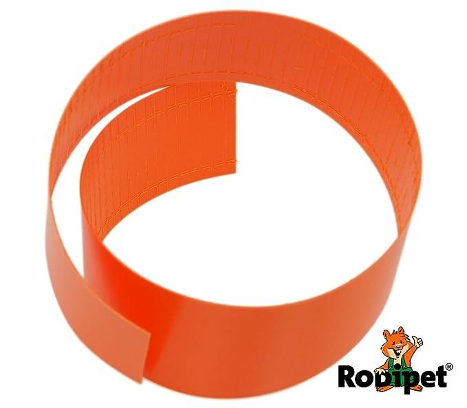 Cinta de correr Naranja para 20 cm Robo Wheel: Amazon.es: Hogar
