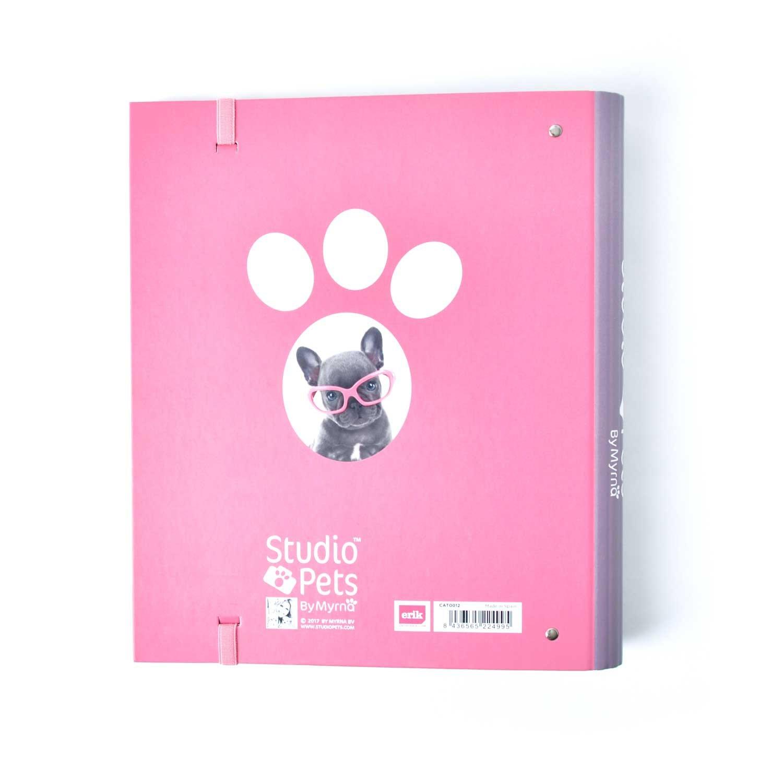 Grupo Erik Editores Carpeta 4 Anillas Troquelada Premium Studio Pets Dog Camera: Amazon.es: Oficina y papelería