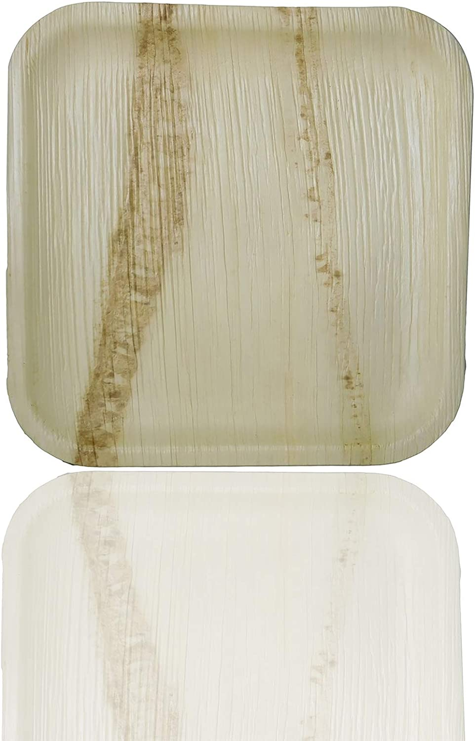 Palm Naki Square Palm Leaf Plates - Disposable Dinnerware Set, Compostable and Biodegradable Dinner Plates - Palm Leaves Wood Plates, - 40 Count 10 inch Square Plates