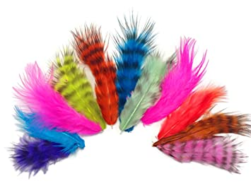 moonlight feathers 1 pack colorful mix grizzly