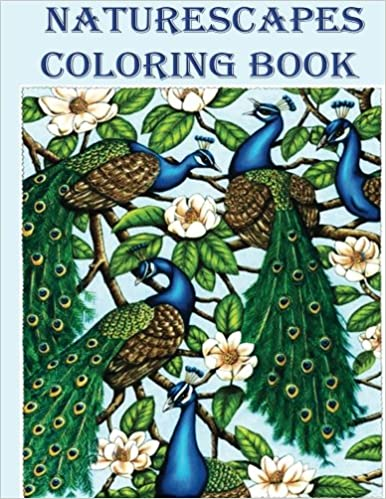 Naturescapes Coloring Book A Experience For Nature Lovers Adult AN Creation 9781546571766 Amazon Books