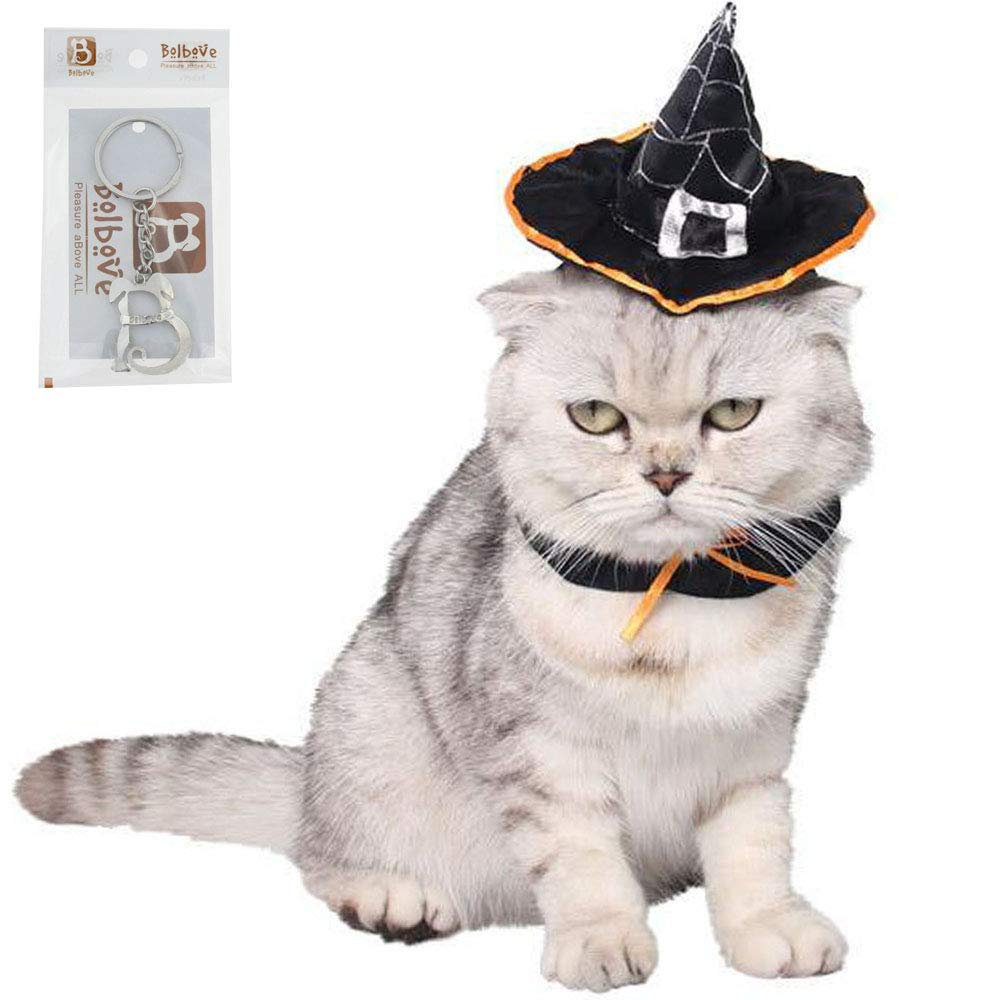 Bolbove Halloween Magic Witch Hat Pet Wizard Headwear for Cats & Small Dogs Party Costume Free size