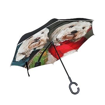 BENNIGIRY Paraguas de Doble Capa para Perros con Impresión de Paraguas, Protección contra el Viento