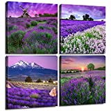 Best Wall Photos Of Beauties - Lavender Home Decor Canvas Wall Art Print Review