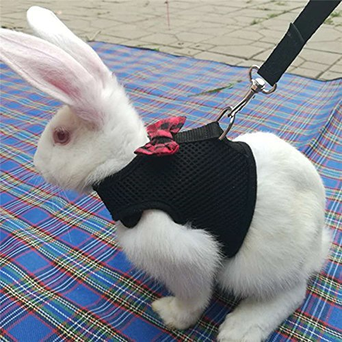 S,Black TopHonor Hamster Bunny Harness and Leash Adjustable Bow for Small Rabbits Guinea Pig