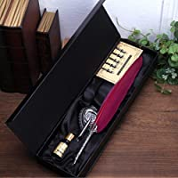 ZTCOO Antique Feather Pen Set Metal Nibbed Calligraphy Pen Set Writing Quill (Wine Red)