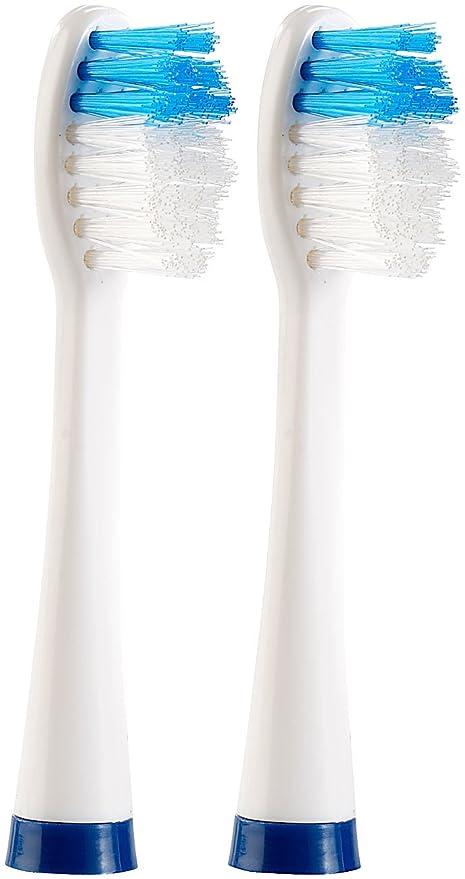 SB-Jefes cepillo para guitarras eléctricas de pilas de viaje cepillo de dientes (NC