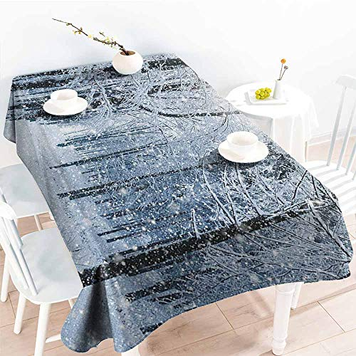 - familytaste Winter,Table Cloth for Outdoor Picnic Forest in Winter Snow Freezing Weather Frozen Barren Jungle Environment Photo 60