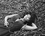 #2: Sophia Loren 16x20 Poster awesome pose with cigarette lying back in grass
