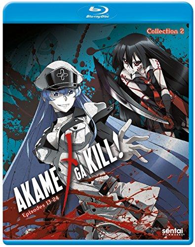 anime akame ga kill - 8