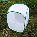 Butterfly Pop-up Cage Praying Mantis Stick Insect Housing Enclosure