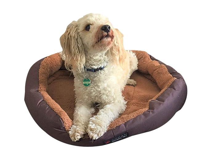 Cama para perros Tamaño L 60 cm de diámetro con cojín Reversible marrón/beige con acolchado lavable, tejido de forro polar Oxford Super Cómodo y resistente: ...