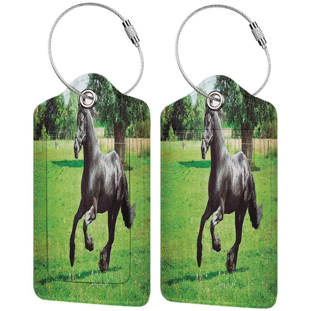 Flexible luggage tag Animal Decor Firesian Male Horse Masculine Driving Force of Life Power Inner Strenghth Symbol Print Fashion match Black Green W2.7 x L4.6