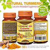 Natural Turmeric Curcumin Antioxidant Supplement - 95% Standardized Curcuminoids Capsules for Joint Pain & Back Pain Relief - Anti Aging & Anti-Inflammatory 60 Vegetarian Pills