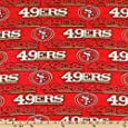 NFL Fleece San Francisco 49ers Red Fabric By The Yard